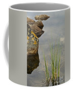 Rockery Coffee Mug
