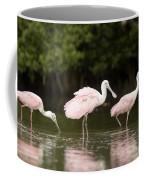 Roseate Spoonbills Ajaia Ajaja Feed Coffee Mug