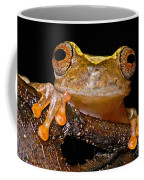 Ross Allens Treefrog Coffee Mug