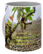 Ruins Of  Machu Picchu Coffee Mug