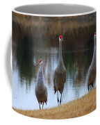 Sandhill Crane Family By Pond Coffee Mug