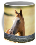 Single Horse Coffee Mug