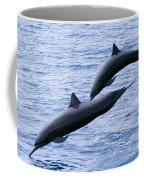 Spinner Dolphins Coffee Mug