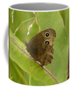 2-spotted Wood Nymph Coffee Mug