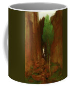 Spring In A Narrow Gorge  Coffee Mug