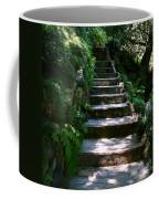 Stone Steps  Coffee Mug