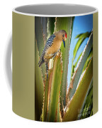The Gila Woodpecker Coffee Mug