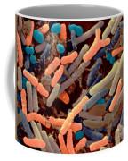 Toddlers Feces With Bifidobacteria, Sem Coffee Mug