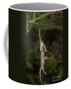 Tree Snake Eating Gecko Coffee Mug