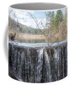 Vermont Swamp Coffee Mug