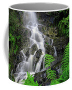 Waterfall In Cradle Mountain Coffee Mug