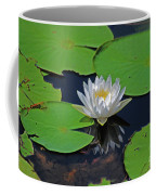 2- White Water Lily Coffee Mug