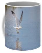 Yellow Legged Gull Take Off Coffee Mug