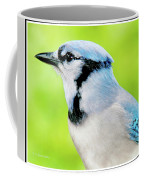 Blue Jay, Animal Portrait Coffee Mug