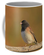 Dark-eyed Junco Coffee Mug