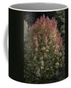 2015 Note Di Autunno Coffee Mug