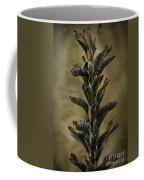 2016 Horicon Marsh - Seed Pods Unfurled Coffee Mug