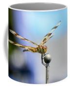 2017 Eclipse Dragonfly Coffee Mug