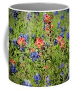 201703300-068 Indian Paintbrush Blossom 2x3 Coffee Mug