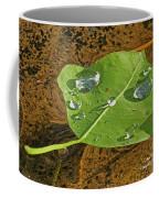 2018 08 31 Sign  H2o Leaf Img_5999 Coffee Mug