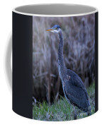 2018_3_09  Blue Heron-5652 Coffee Mug