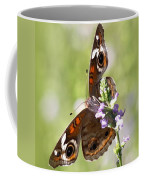 2065 - Butterfly Coffee Mug