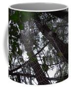 Australia - Spider Web High In The Tree Coffee Mug
