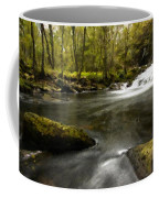 Drawings Landscapes Coffee Mug