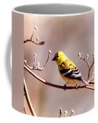 2164 - Goldfinch Coffee Mug