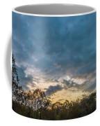 Grand Falls Waterfall Coffee Mug