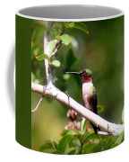 2274 - Hummingbird Coffee Mug