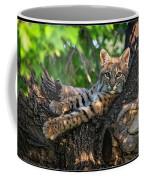In A Lurch - Bobcat 8 Coffee Mug