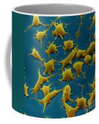 Human Fibroblast Cells Coffee Mug