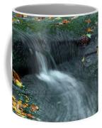 260 Olmsted Falls Coffee Mug