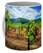 2638- Coffaro Vineyard Coffee Mug
