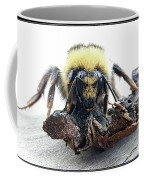 28 Coffee Mug