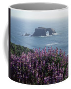 2a6101 Arched Rock And Blue Pod Lupine Ca Coffee Mug