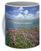 2a6106 Ice Plant Doran Beach Ca Coffee Mug