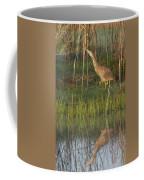 American Bittern Along The Shore Coffee Mug