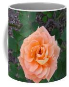 Australia - Orange Rose Flower Coffee Mug