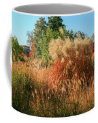 Autumn In Forest Park St Louis Missouri Coffee Mug