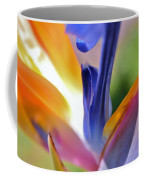 3 Bird Of Paradise Macro Coffee Mug