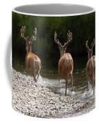 3 Bucks Coffee Mug