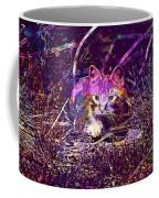 Cat Kitten Mieze Red Mackerel Tabby  Coffee Mug