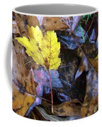 Colors Of The Fall Coffee Mug