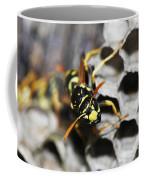Common Wasp Vespula Vulgaris Coffee Mug