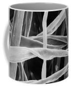 Cotton Fibers Coffee Mug by Science Source