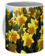 Daffodils In The Sunshine Coffee Mug