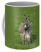 Donkey Mother And Young Coffee Mug