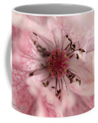 Double Dusty Rose Poppy From The Angel's Choir Mix Coffee Mug
